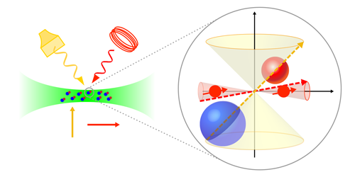 Viewpoint: A New Spin on Ultracold Molecules