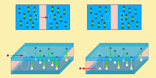 Viewpoint: A Magnetic-Field-Free Exciton Condensate