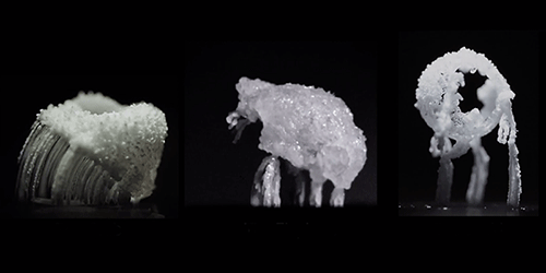 Video Prize Dominated by Superhydrophobic Surfaces
