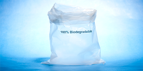 Sustainable Plastics Inspired by Nature