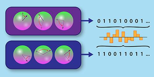 Viewpoint: Quantum Computer Crosscheck