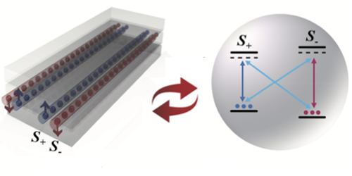 A Hallmark of Topological Insulators is Measured in Atoms