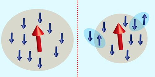 Lone Spin Remains Shielded Despite Superconductivity