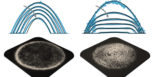 Binary Liquid Mixtures Form Flattened Droplets
