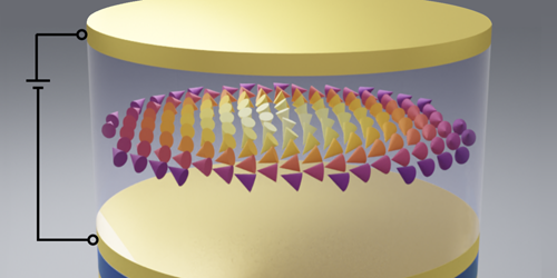 Magnetic Skyrmions Could Act as Qubits