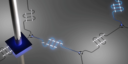 Viewpoint: A Bird's Eye View of Circuit Photons