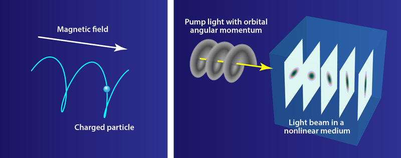 Physics - Viewpoint: Liquid Light with a Whirl